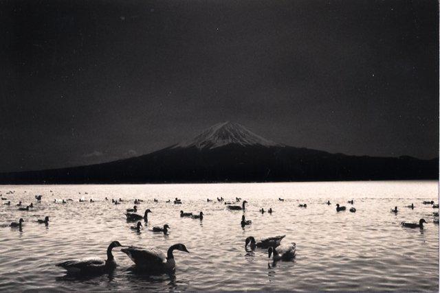 masao-yamamoto-07